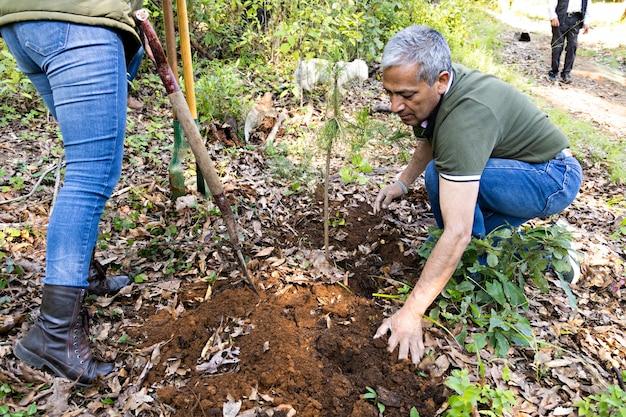 Un hombre y una mujer colocando tierra para plantar un árbol en medio del bosque en un día soleado