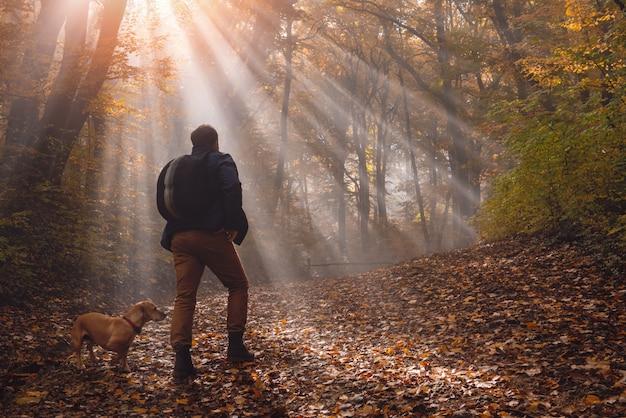 Hombre y perro en el bosque