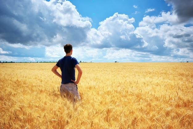 Hombre en prado de trigo amarillo.