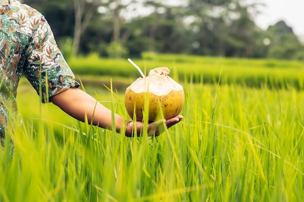 Hombre que sostiene la bebida de coco con paja en la mano