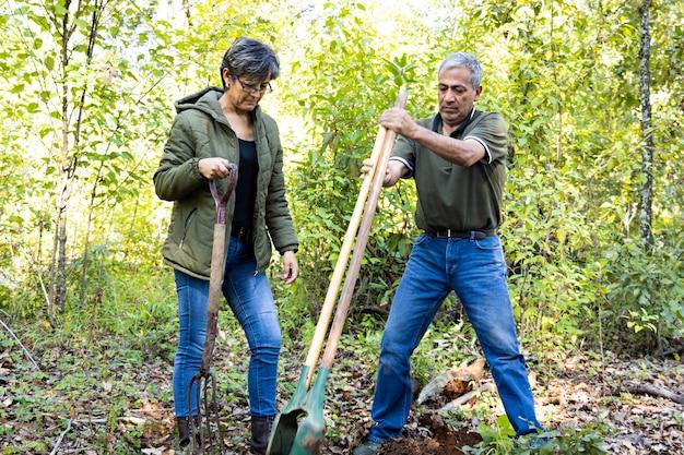 Un hombre que usa una excavadora de agujeros y una mujer que sostiene una pala para hacer un agujero para plantar un árbol en medio del bosque en un día soleado