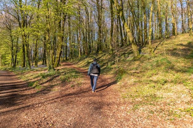 Hombre con ruksac en la espalda corriendo colina arriba en el bosque con sol desde atrás.