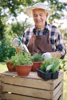 Hombre senior trabajando en el campo con plantas