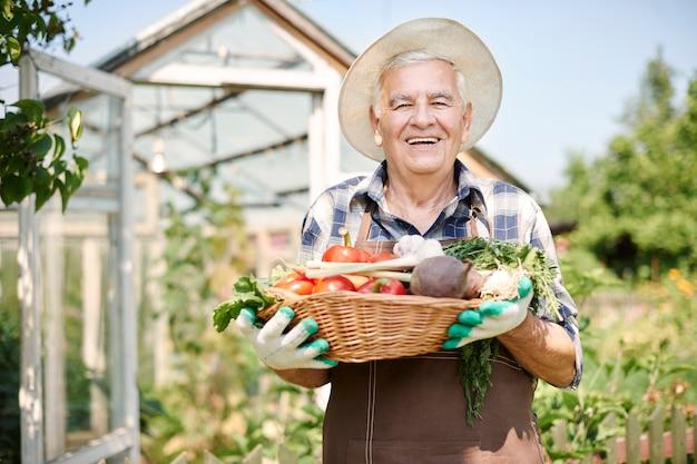 Hombre senior trabajando en el campo con verduras