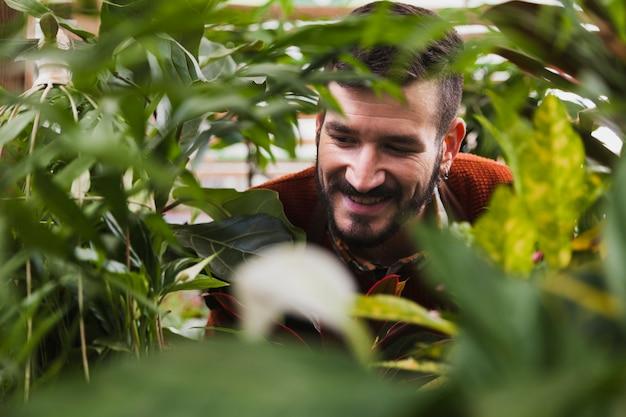 Hombre sonriente detrás de las plantas