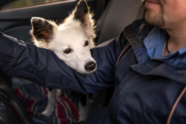 Hombre y su perro en el coche.