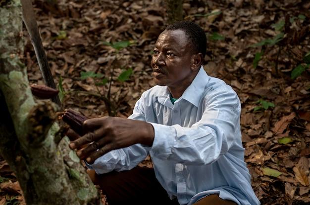 Hombre de tiro medio recogiendo granos de cacao