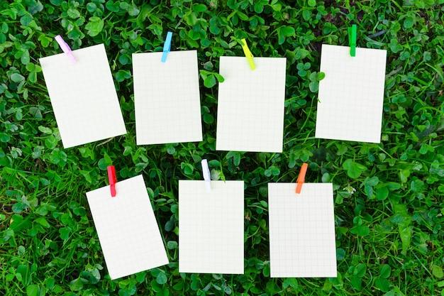 Horario semanal sobre césped con papel vacío y alfileres de colores de madera, concepto de plan escolar