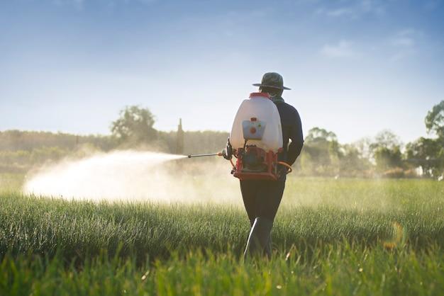 Horticultores libres de productos químicos para prevenir plagas, fertilizantes, mantenimiento.