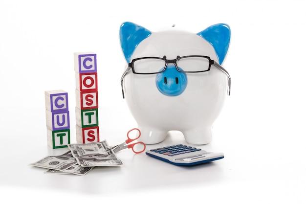 Hucha azul y blanca con gafas con bloques de costos de corte