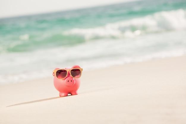Hucha con gafas de sol del verano en la arena