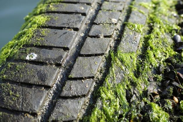 Huella de neumático en el barro