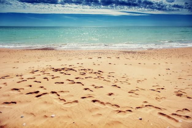 Huellas en la arena de la playa.