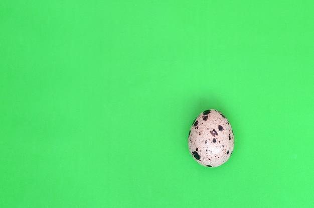 Un huevo de codorniz sobre una superficie verde clara.