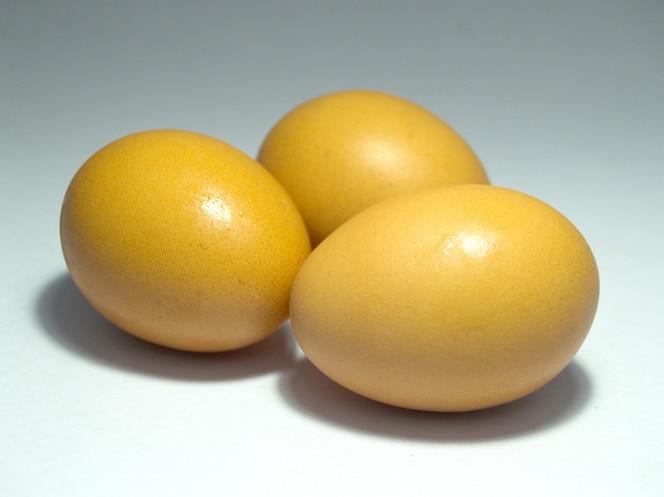 Huevo para comida