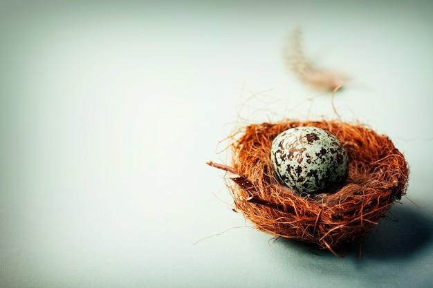 Huevo de pascua en nido de pájaros