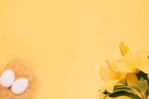 Huevos blancos y flor de lirio sobre fondo amarillo