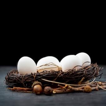 Huevos blancos en un nido