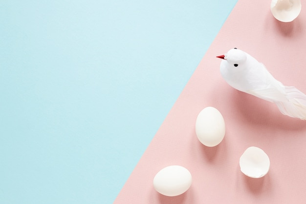 Huevos blancos y piggeon en mesa