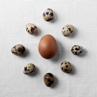 Huevos de codorniz y pollo laicos planos en mesa