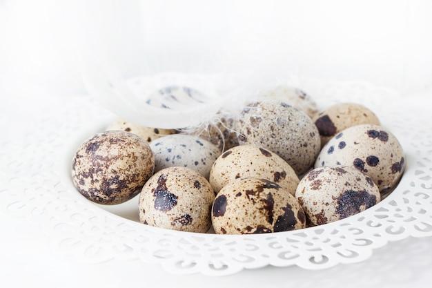 Huevos de codorniz sobre blanco