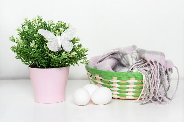 Huevos de gallina blanca de pascua y planta de primavera verde en maceta