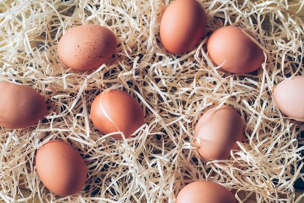 Huevos de gallina cruda