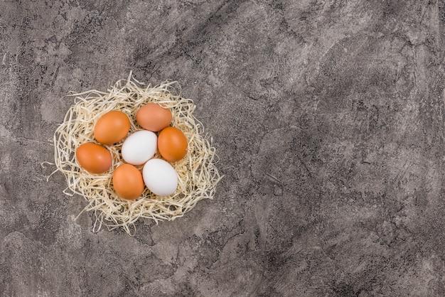 Huevos de gallina en nido en mesa gris
