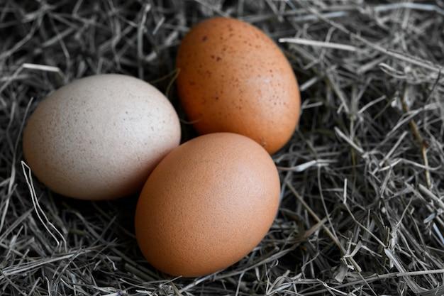 Huevos de gallina en nidos de mimbre en gallinero vista superior. huevos orgánicos naturales en el heno. huevos de gallina frescos.