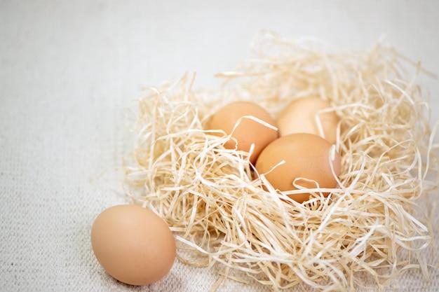 Huevos en un nido en el fondo de tela de textura