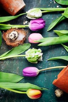 Huevos de pascua con flores de tulipán de primavera y herramientas de jardín en tablero de madera vintage