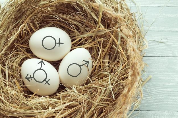 Huevos con símbolo de transgénero, símbolos de género femenino y masculino