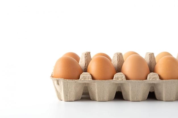 Huevos sobre fondo blanco