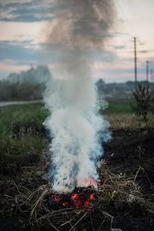 Humo de un fuego que se desvanece en la calle. para usar como textura