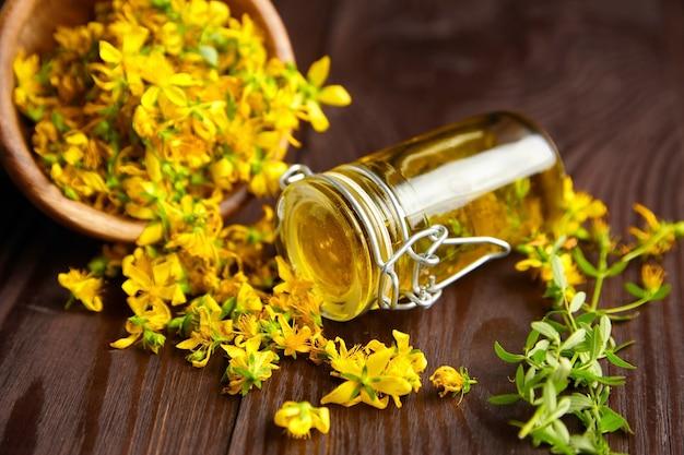 Hypericum perforatum o st johns wort planta flores brotes infusión de aceite en tarro de vidrio y flores frescas en un tazón