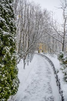 Iglesia ortodoxa en bosque de invierno