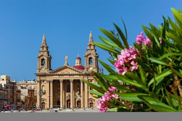 Una iglesia parroquial católica romana se encuentra en una gran plaza con adelfa rosa en floriana, malta