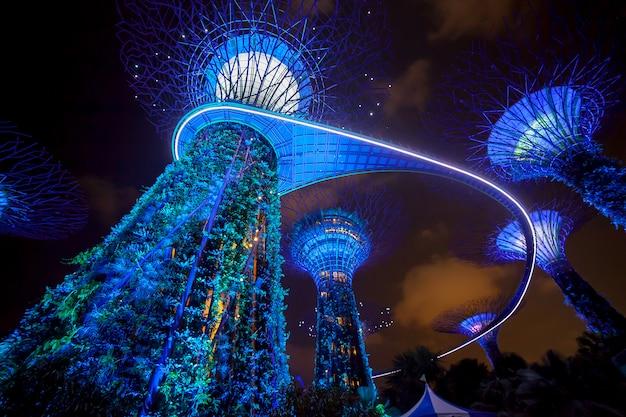 Iluminación nocturna con espectáculo de luces en garden by the bay