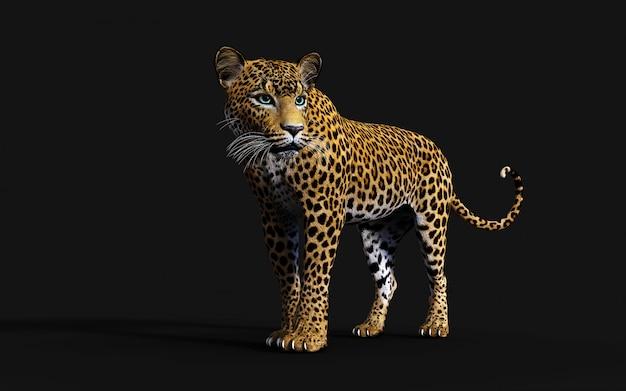 Ilustración 3d de leopardo aislado sobre fondo negro