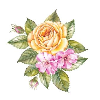 Ilustración acuarela de flor color de rosa.