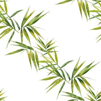 Ilustración acuarela de hojas de bambú