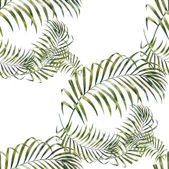 Ilustración acuarela de hojas
