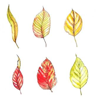 Ilustración dibujada a mano de acuarela y tinta de coloridas hojas de otoño brillantes aisladas en el fondo blanco