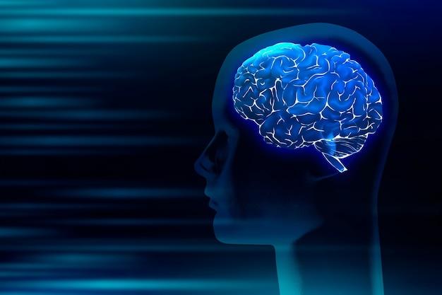 Ilustración digital médica del cerebro humano