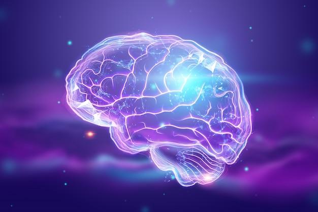 La imagen del cerebro humano.