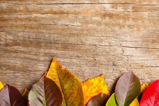 Imagen de hojas de otoño sobre fondo con textura de madera