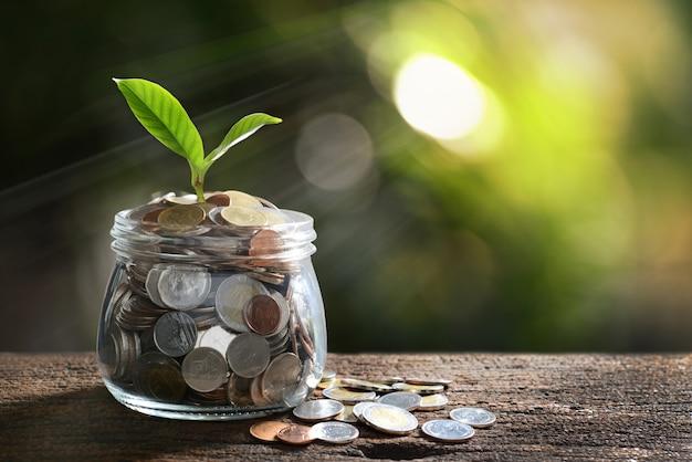 Imagen de la pila de monedas con planta en la parte superior en frasco de vidrio para negocios