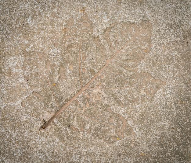 Impresión de la hoja en piedra