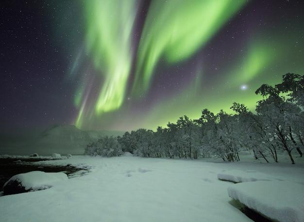 Impresionante toma de viento de colores bailando sobre las maravillas de invierno en lofoten, noruega