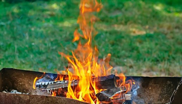 Incendio, llamas de brasa de madera para parrilla o barbacoa picnic, humo y leña al aire libre